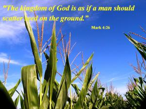 Parable of the sower and seed